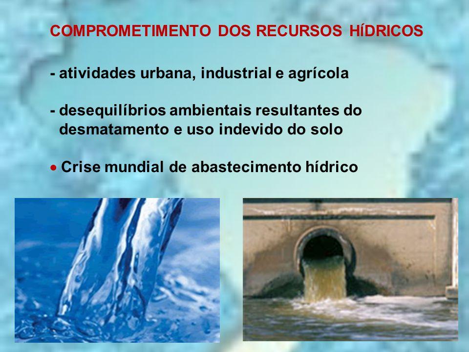 COMPROMETIMENTO DOS RECURSOS H Í DRICOS - atividades urbana, industrial e agrícola - desequilíbrios ambientais resultantes do desmatamento e uso indev