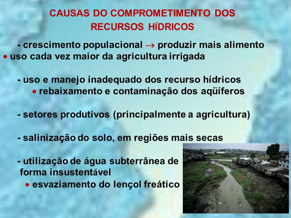 CAUSAS DO COMPROMETIMENTO DOS RECURSOS H Í DRICOS -Brasil *Um dos maiores produtores agropecuários do planeta Relatório ONU: Agricultura é maior ameaça a reservas de água doce do planeta  O documento afirma que cerca de dois terços da água doce proveniente de aqüíferos e outros rios são consumidos pela agricultura e pecuária a agricultura é a atividade que mais consome água - lavoura de arroz  grande consumidora de água
