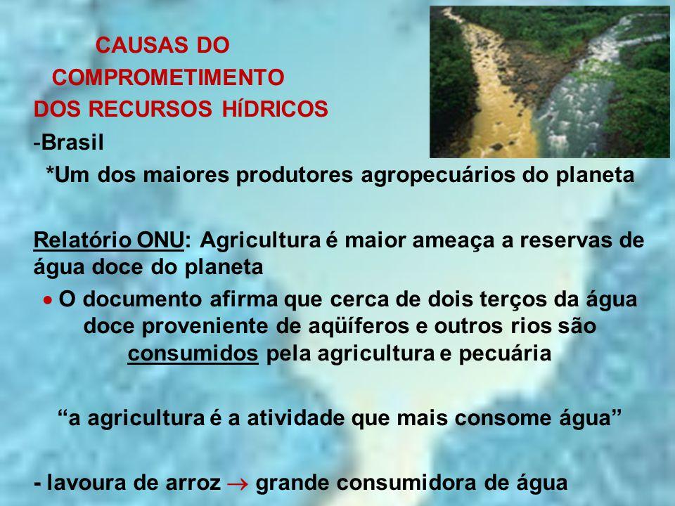 CAUSAS DO COMPROMETIMENTO DOS RECURSOS H Í DRICOS -Brasil *Um dos maiores produtores agropecuários do planeta Relatório ONU: Agricultura é maior ameaç