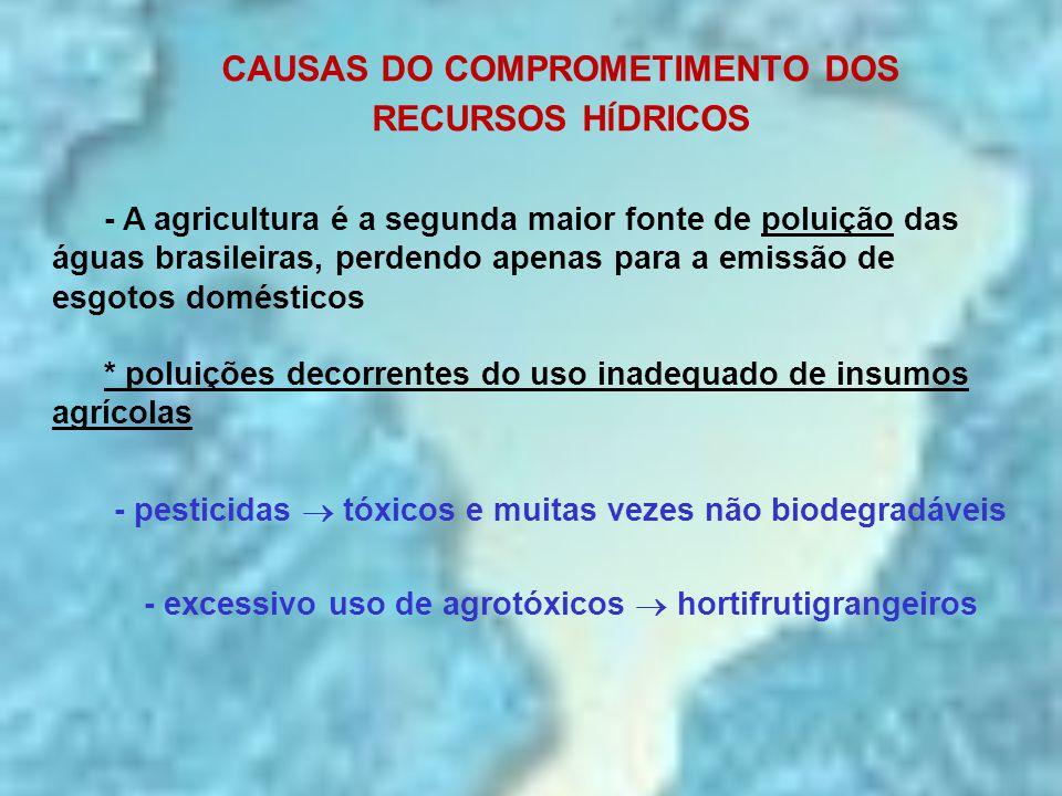 CAUSAS DO COMPROMETIMENTO DOS RECURSOS H Í DRICOS - A agricultura é a segunda maior fonte de poluição das águas brasileiras, perdendo apenas para a em