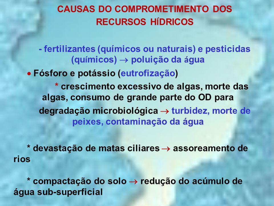 CAUSAS DO COMPROMETIMENTO DOS RECURSOS H Í DRICOS - fertilizantes (químicos ou naturais) e pesticidas (qu í micos)  poluição da á gua  Fósforo e pot