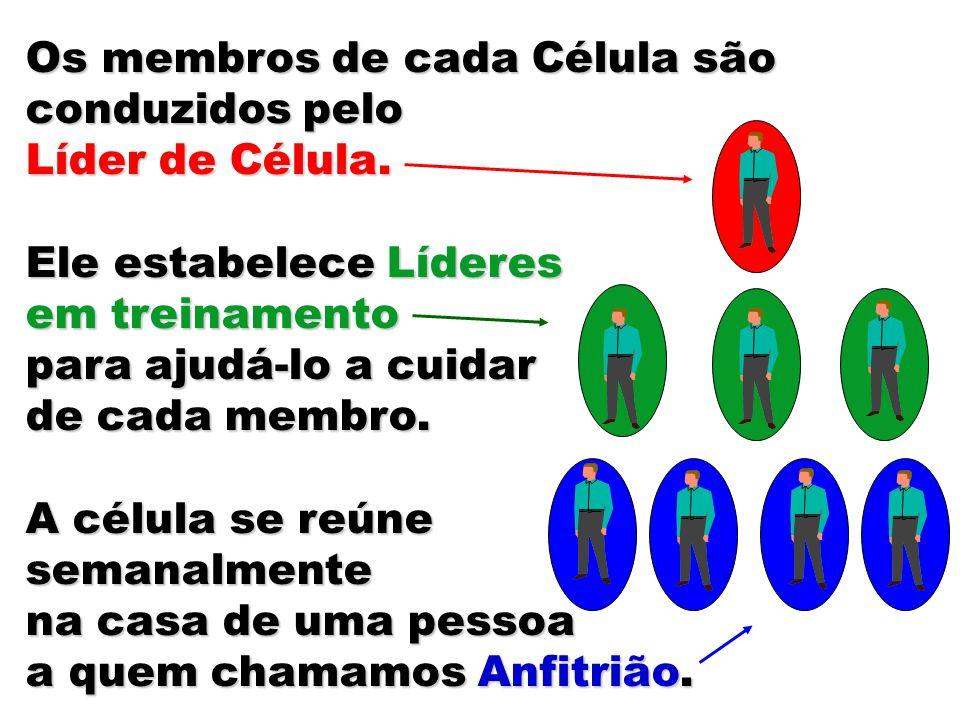 Os membros de cada Célula são conduzidos pelo Líder de Célula. Ele estabelece Líderes em treinamento para ajudá-lo a cuidar de cada membro. A célula s