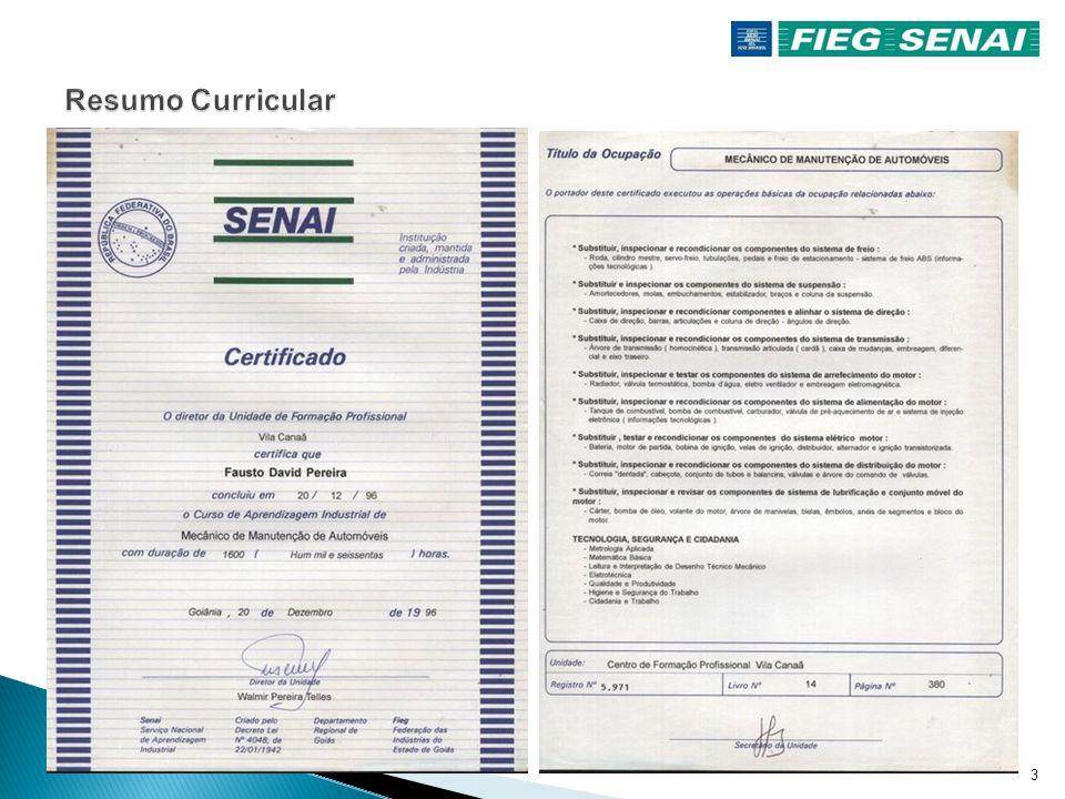 2  FORMAÇÃO  Profissional mantenedor mecânico e eletromecânico em manutenção automotiva e aeronáutica  Técnico profissional com registro junto ao C