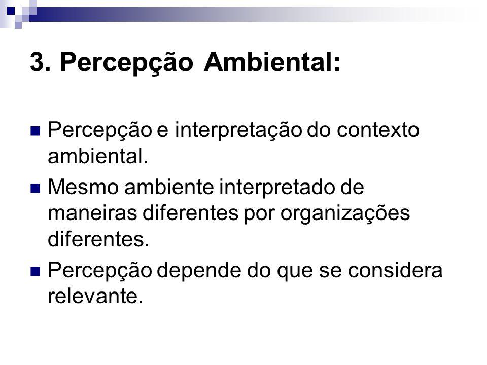 3. Percepção Ambiental: Percepção e interpretação do contexto ambiental. Mesmo ambiente interpretado de maneiras diferentes por organizações diferente