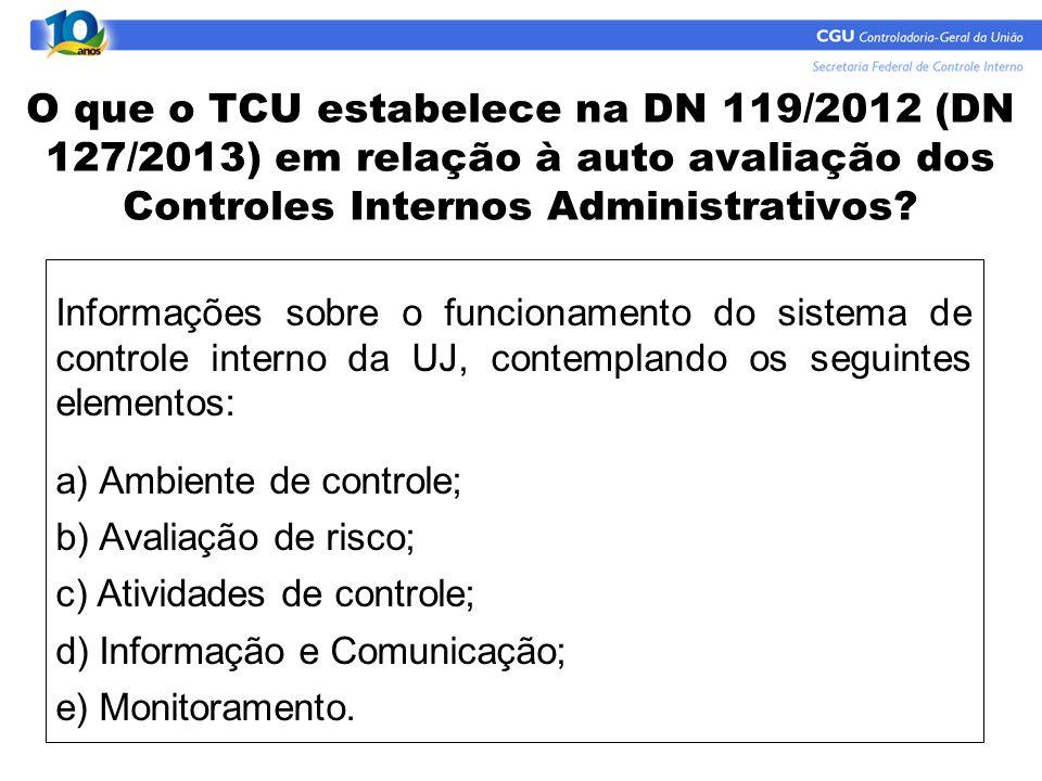 O que o TCU estabelece na DN 119/2012 (DN 127/2013) em relação à auto avaliação dos Controles Internos Administrativos? Informações sobre o funcioname