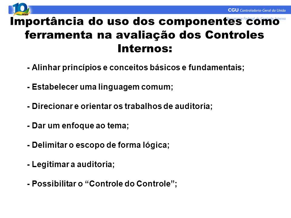 - Alinhar princípios e conceitos básicos e fundamentais; - Estabelecer uma linguagem comum; - Direcionar e orientar os trabalhos de auditoria; - Dar u