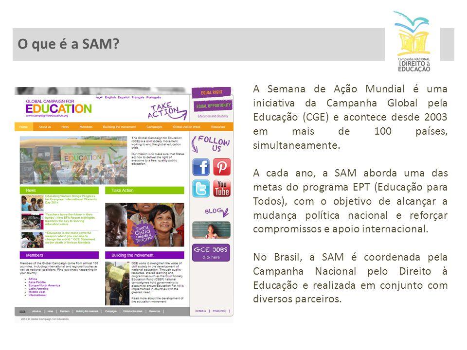 A SAM no Brasil 2011