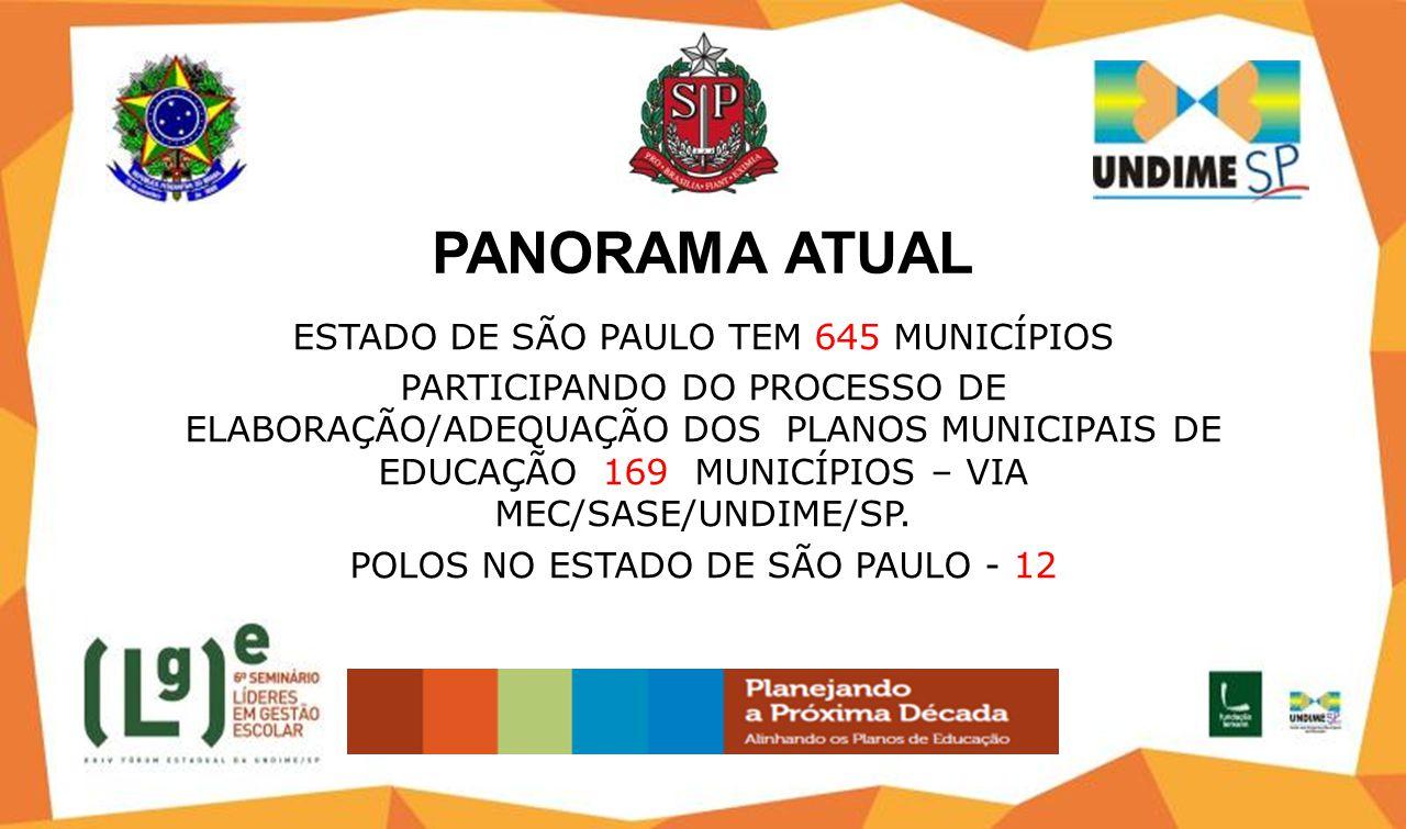 PANORAMA ATUAL ESTADO DE SÃO PAULO TEM 645 MUNICÍPIOS PARTICIPANDO DO PROCESSO DE ELABORAÇÃO/ADEQUAÇÃO DOS PLANOS MUNICIPAIS DE EDUCAÇÃO 169 MUNICÍPIOS – VIA MEC/SASE/UNDIME/SP.