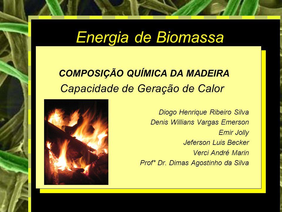 1 Energia de Biomassa COMPOSIÇÃO QUÍMICA DA MADEIRA Capacidade de Geração de Calor Diogo Henrique Ribeiro Silva Denis Willians Vargas Emerson Emir Jolly Jeferson Luis Becker Verci André Marin Prof° Dr.