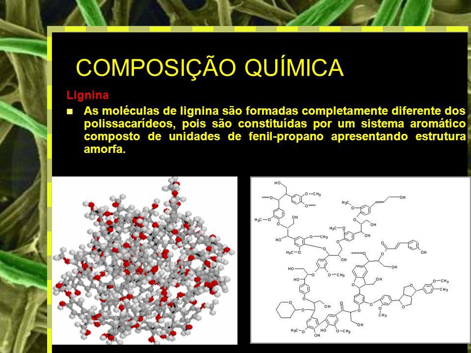 10 COMPOSIÇÃO QUÍMICA Lignina As moléculas de lignina são formadas completamente diferente dos polissacarídeos, pois são constituídas por um sistema aromático composto de unidades de fenil-propano apresentando estrutura amorfa.