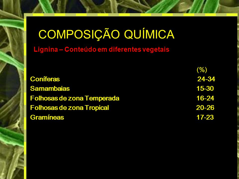 11 COMPOSIÇÃO QUÍMICA Lignina – Conteúdo em diferentes vegetais (%) Coníferas24-34 Samambaias 15-30 Folhosas de zona Temperada 16-24 Folhosas de zona Tropical 20-26 Gramíneas 17-23