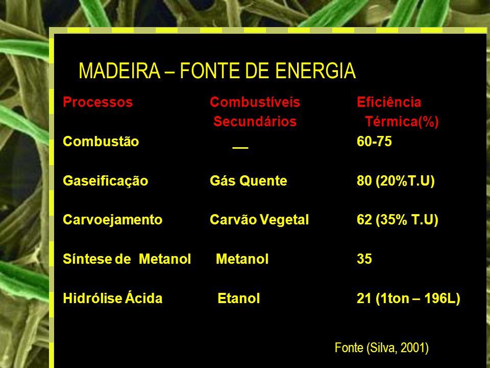 15 ProcessosCombustíveis Eficiência Secundários Térmica(%) Combustão __60-75 GaseificaçãoGás Quente80 (20%T.U) CarvoejamentoCarvão Vegetal62 (35% T.U) Síntese de Metanol Metanol35 Hidrólise Ácida Etanol21 (1ton – 196L) MADEIRA – FONTE DE ENERGIA Fonte (Silva, 2001)