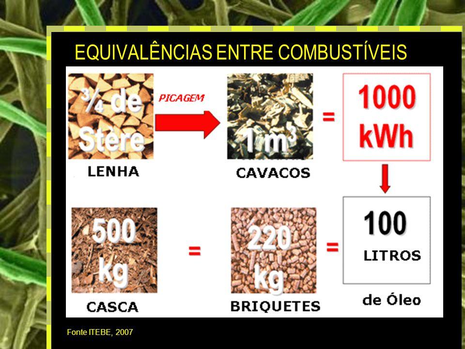 17 EQUIVALÊNCIAS ENTRE COMBUSTÍVEIS Fonte ITEBE, 2007