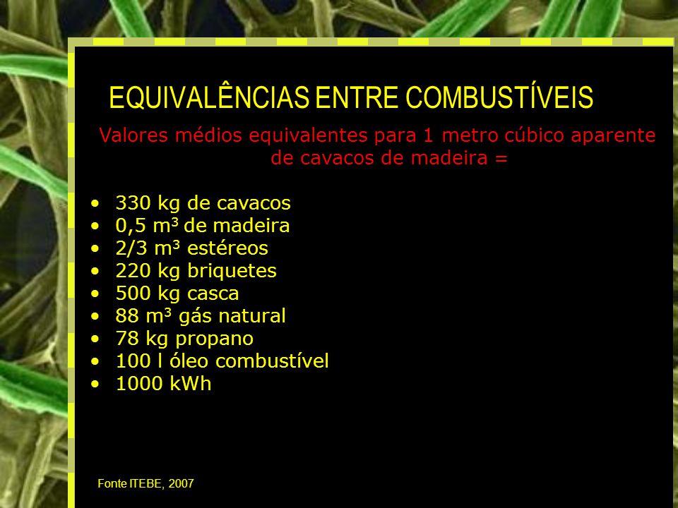 18 EQUIVALÊNCIAS ENTRE COMBUSTÍVEIS Fonte ITEBE, 2007 Valores médios equivalentes para 1 metro cúbico aparente de cavacos de madeira = 330 kg de cavacos 0,5 m 3 de madeira 2/3 m 3 estéreos 220 kg briquetes 500 kg casca 88 m 3 gás natural 78 kg propano 100 l óleo combustível 1000 kWh