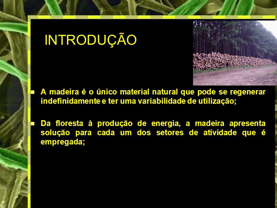 2 INTRODUÇÃO A madeira é o único material natural que pode se regenerar indefinidamente e ter uma variabilidade de utilização; Da floresta à produção de energia, a madeira apresenta solução para cada um dos setores de atividade que é empregada;