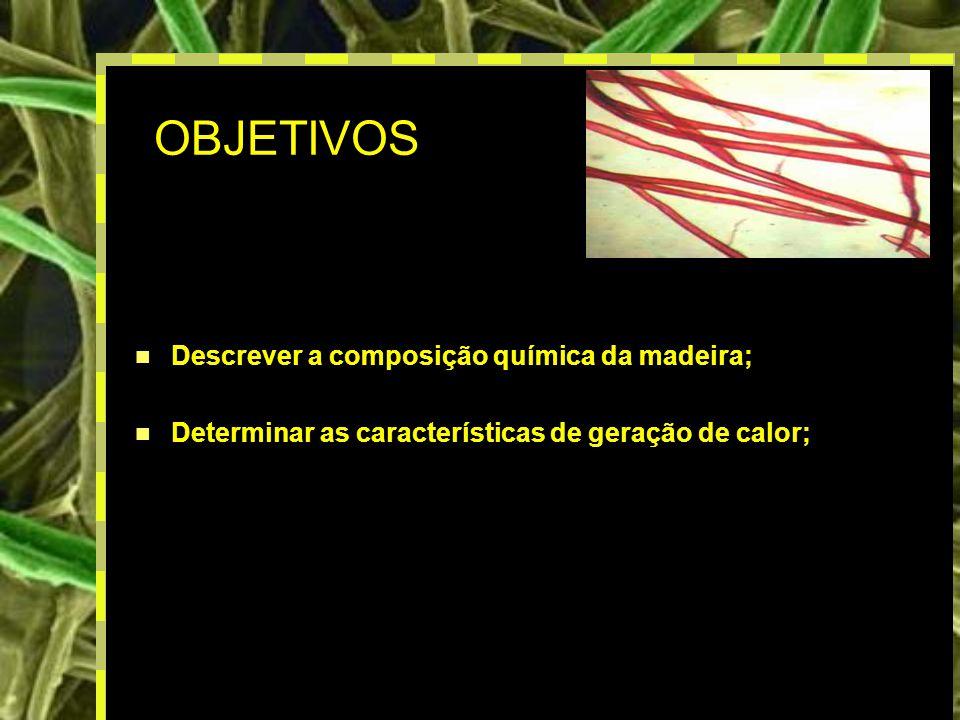 3 OBJETIVOS Descrever a composição química da madeira; Determinar as características de geração de calor;