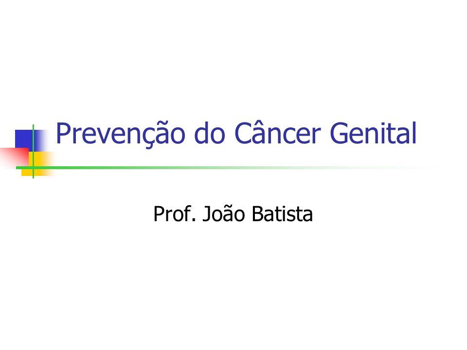 Prevenção do Câncer Genital Prof. João Batista