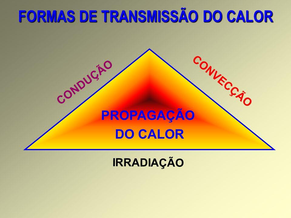 FORMAS DE TRANSMISSÃO DO CALOR PROPAGAÇÃO DO CALOR CONVECÇÃO CONDUÇÃO IRRADIAÇÃO