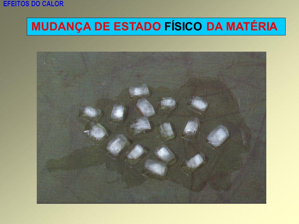 EFEITOS DO CALOR MUDANÇA DE ESTADO FÍSICO DA MATÉRIA