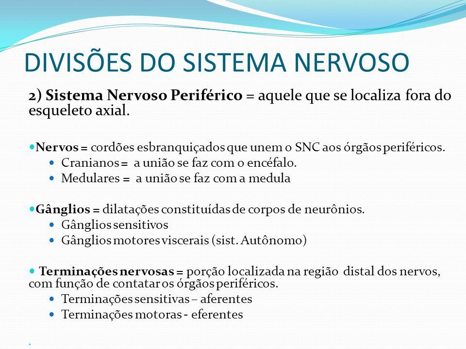 DIVISÕES DO SISTEMA NERVOSO 2) Sistema Nervoso Periférico = aquele que se localiza fora do esqueleto axial.