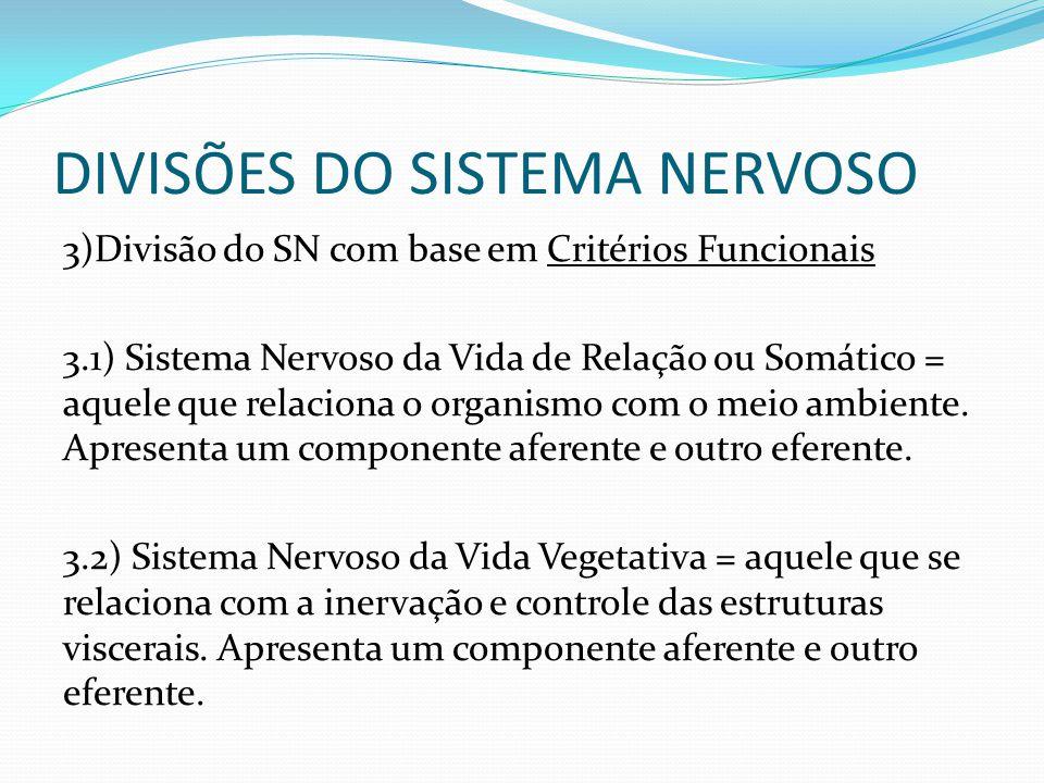 DIVISÕES DO SISTEMA NERVOSO 3)Divisão do SN com base em Critérios Funcionais 3.1) Sistema Nervoso da Vida de Relação ou Somático = aquele que relaciona o organismo com o meio ambiente.