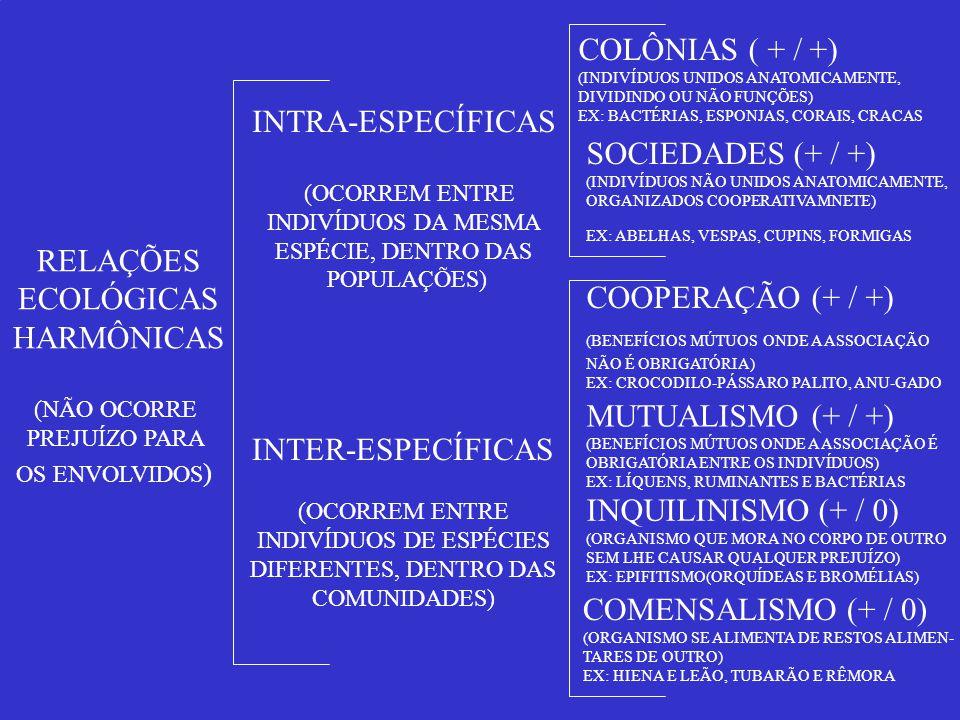 RELAÇÕES ECOLÓGICAS HARMÔNICAS (NÃO OCORRE PREJUÍZO PARA OS ENVOLVIDOS ) INTER-ESPECÍFICAS (OCORREM ENTRE INDIVÍDUOS DE ESPÉCIES DIFERENTES, DENTRO DA