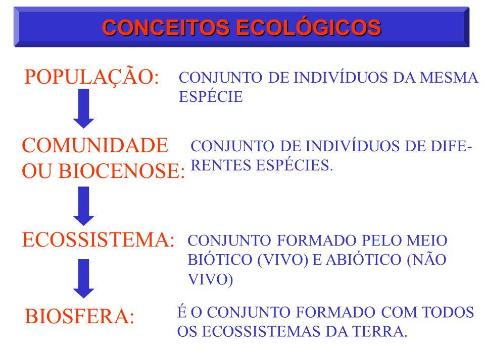 CONCEITOS ECOLÓGICOS POPULAÇÃO: CONJUNTO DE INDIVÍDUOS DA MESMA ESPÉCIE CONJUNTO DE INDIVÍDUOS DE DIFE- RENTES ESPÉCIES. CONJUNTO FORMADO PELO MEIO BI