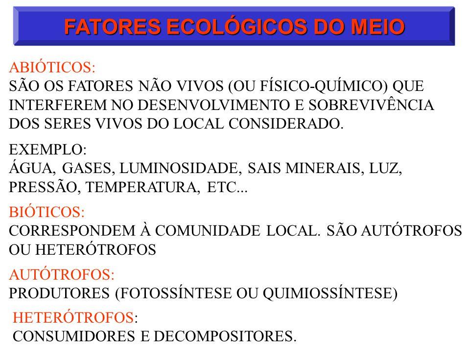 ECOLOGIA: SUCESSÃO ECOLÓGICA NO DECORRER DE UMA SUCESSÃO OCORRE AUMENTO: A)DA BIOMASSA TOTAL DA COMUNIDADE B)DA DIVERSIDADE DE ESPÉCIES E NICHOS ECOLÓGICOS C)DA TAXA DE FOTOSSÍNTESE D)DA TAXA DE RESPIRAÇÃO DURANTE A SUCESSÃO ECOLÓGICA, OCORRE EXTINÇÃO DE ALGUMAS ESPÉCIES E SURGIMENTO DE OUTRAS.
