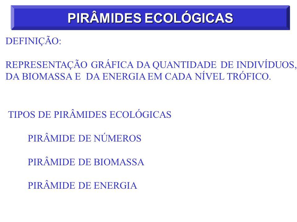 PIRÂMIDES ECOLÓGICAS DEFINIÇÃO: REPRESENTAÇÃO GRÁFICA DA QUANTIDADE DE INDIVÍDUOS, DA BIOMASSA E DA ENERGIA EM CADA NÍVEL TRÓFICO. TIPOS DE PIRÂMIDES