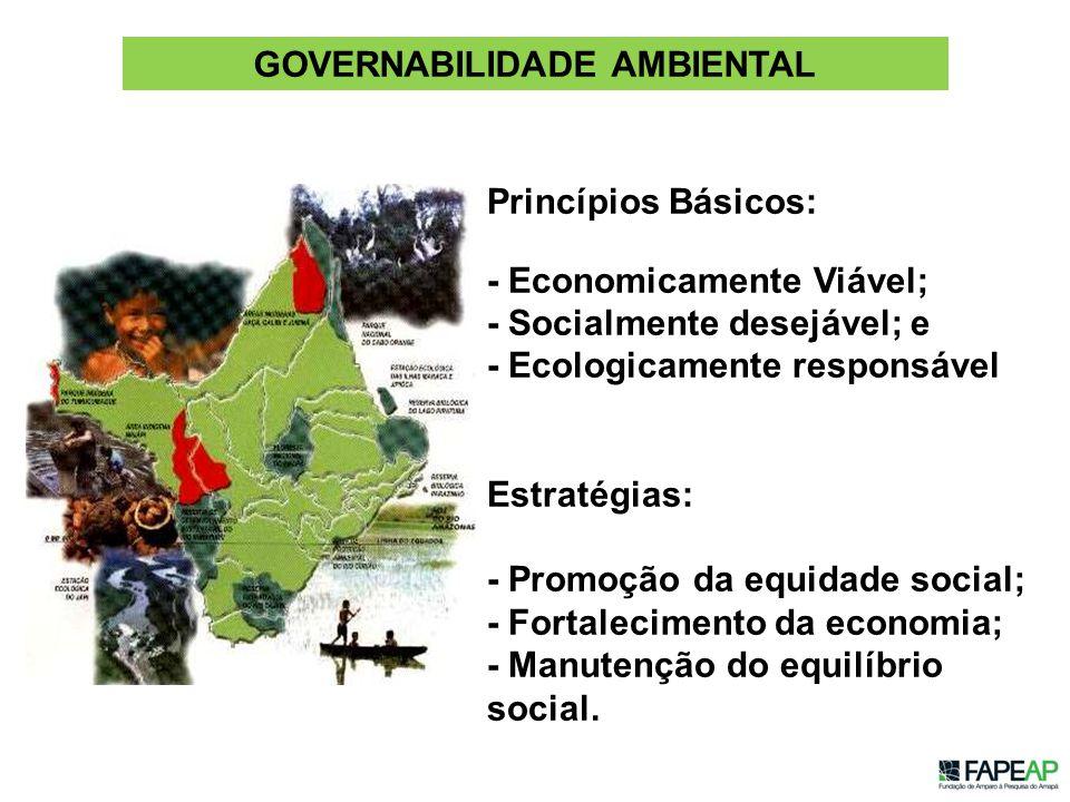 GOVERNABILIDADE AMBIENTAL Princípios Básicos: - Economicamente Viável; - Socialmente desejável; e - Ecologicamente responsável Estratégias: - Promoção da equidade social; - Fortalecimento da economia; - Manutenção do equilíbrio social.