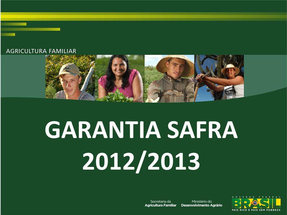 1 GARANTIA SAFRA 2012/2013