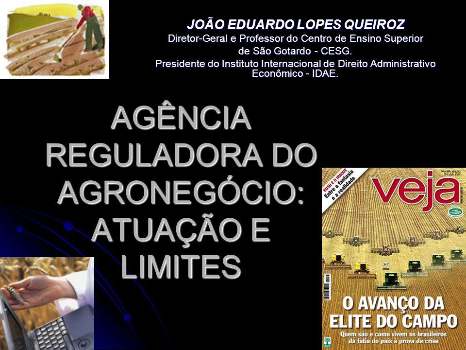AGÊNCIA REGULADORA DO AGRONEGÓCIO: ATUAÇÃO E LIMITES JOÃO EDUARDO LOPES QUEIROZ Diretor-Geral e Professor do Centro de Ensino Superior de São Gotardo