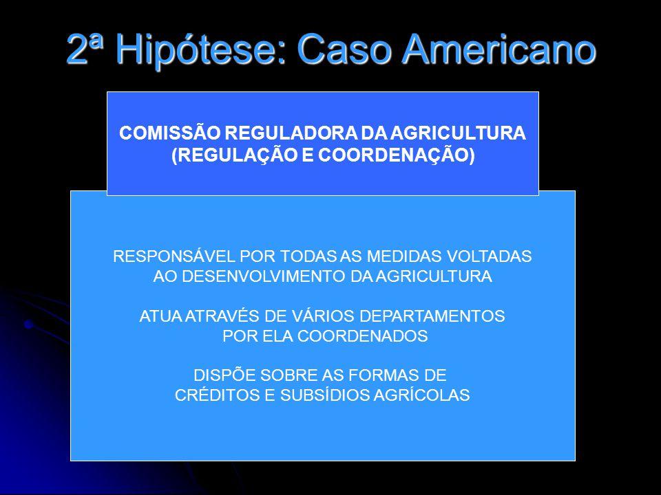 2ª Hipótese: Caso Americano RESPONSÁVEL POR TODAS AS MEDIDAS VOLTADAS AO DESENVOLVIMENTO DA AGRICULTURA ATUA ATRAVÉS DE VÁRIOS DEPARTAMENTOS POR ELA C