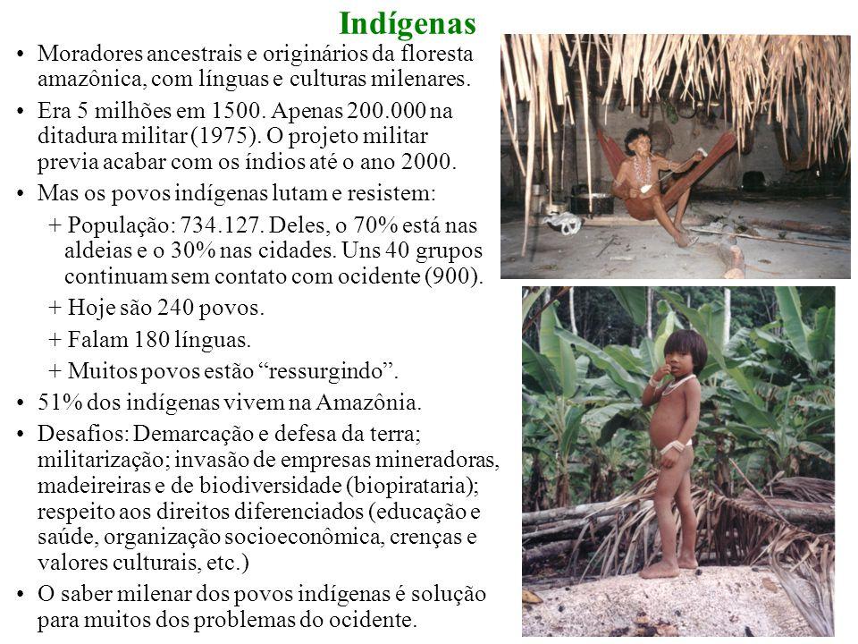 Moradores ancestrais e originários da floresta amazônica, com línguas e culturas milenares.