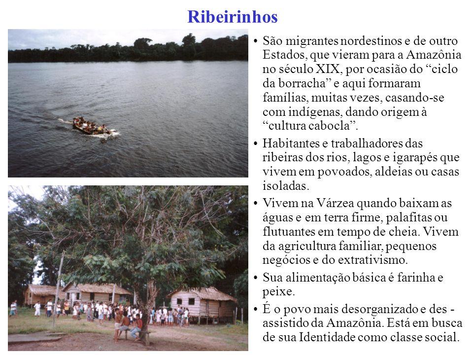 São migrantes nordestinos e de outro Estados, que vieram para a Amazônia no século XIX, por ocasião do ciclo da borracha e aqui formaram famílias, muitas vezes, casando-se com indígenas, dando origem à cultura cabocla .