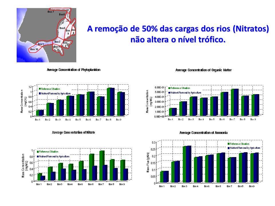 A remoção de 50% das cargas dos rios (Nitratos) não altera o nível trófico.