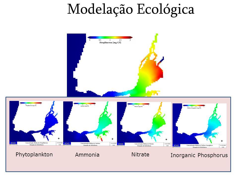 Modelação Ecológica Phytoplankton Ammonia Nitrate Inorganic Phosphorus