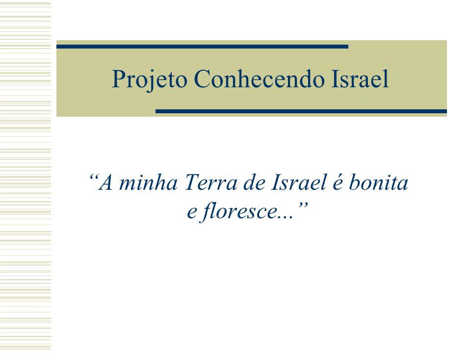 Projeto Conhecendo Israel A minha Terra de Israel é bonita e floresce...