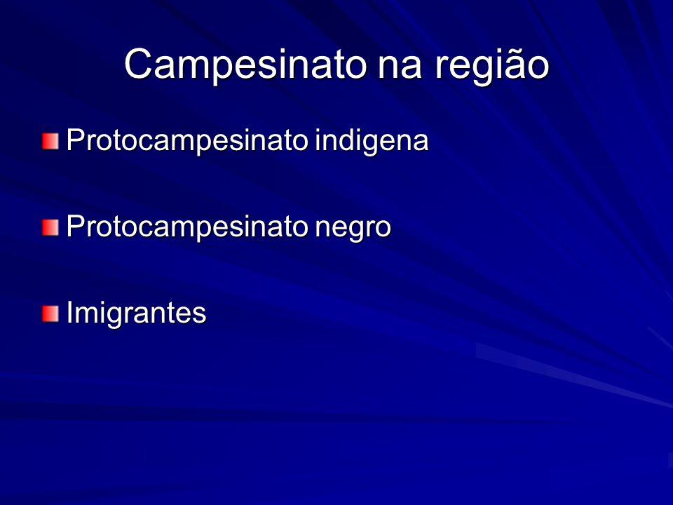 Campesinato na região Protocampesinato indigena Protocampesinato negro Imigrantes