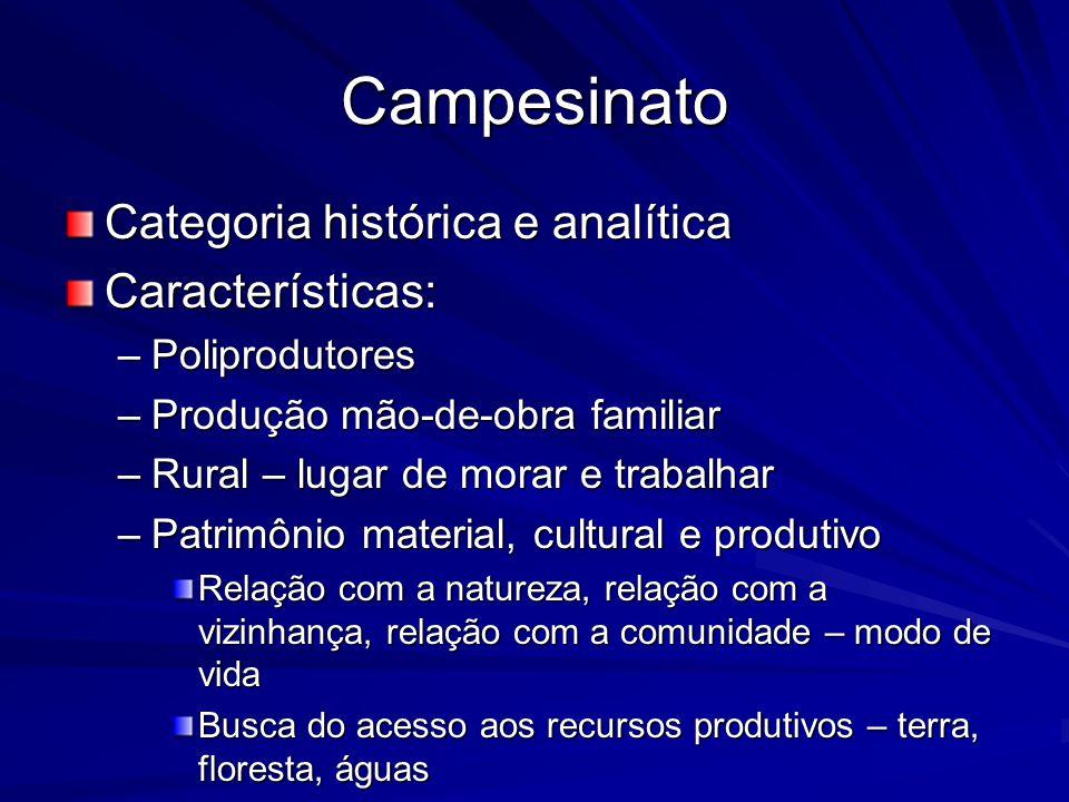 Campesinato Categoria histórica e analítica Características: –Poliprodutores –Produção mão-de-obra familiar –Rural – lugar de morar e trabalhar –Patri