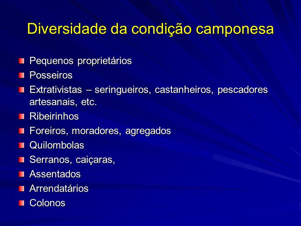 Campesinato na região Morador (sitio, condição, foreiro) ColonoAssalariadoTropeiros
