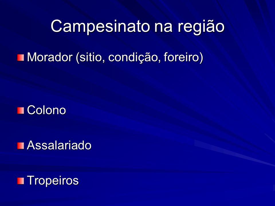 E NO CAMPO??.