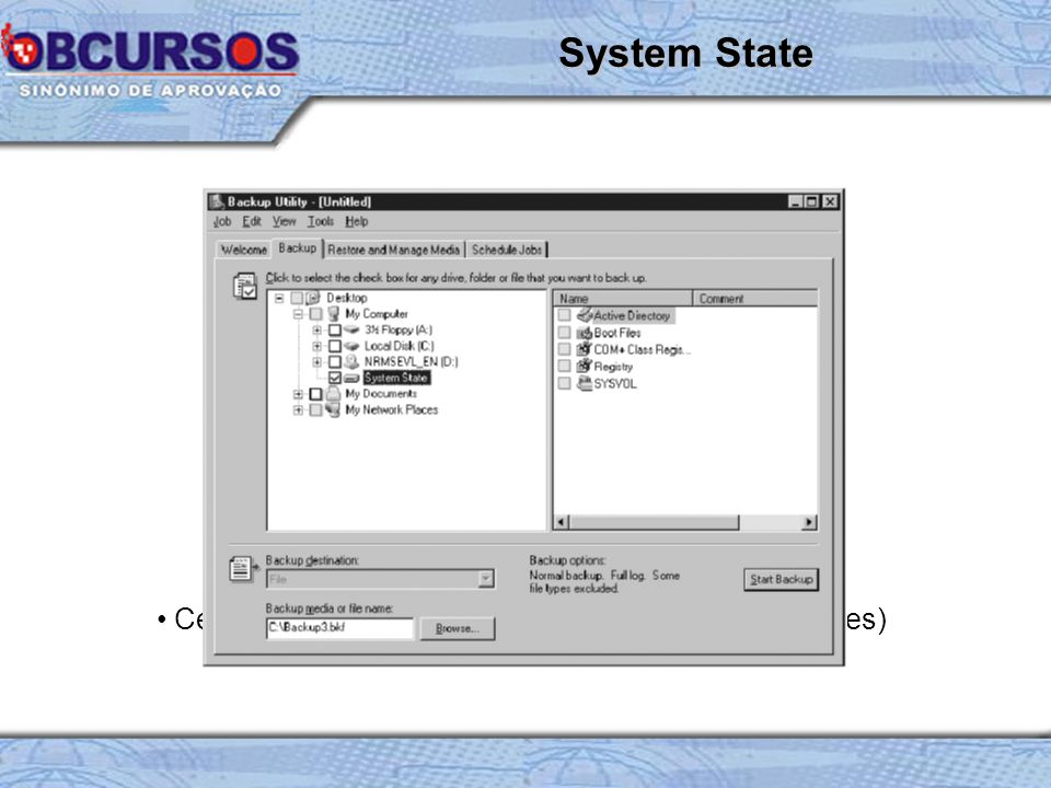 System boot files System files under windows file protection Windows registry COM+ Class Registration Database Active Directory directory service (DC) Sysvol Directory (DC) Cluster Service Information (IIS) Certificate Services Database (Certification authorities) System State