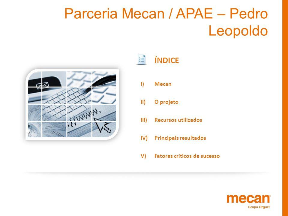 ÍNDICE I)Mecan II)O projeto III)Recursos utilizados IV)Principais resultados V)Fatores críticos de sucesso