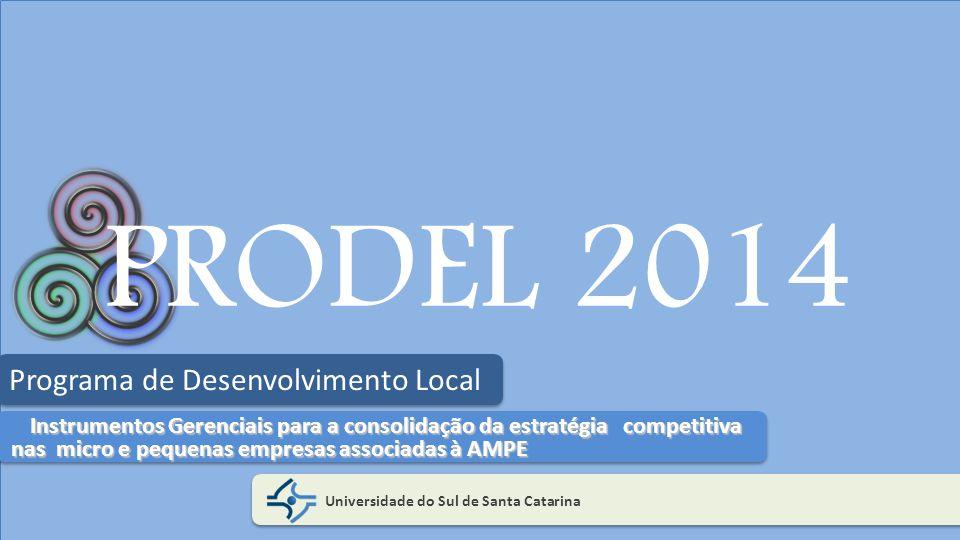 PRODEL 2014 Universidade do Sul de Santa Catarina Programa de Desenvolvimento Local Instrumentos Gerenciais para a consolidação da estratégia competit