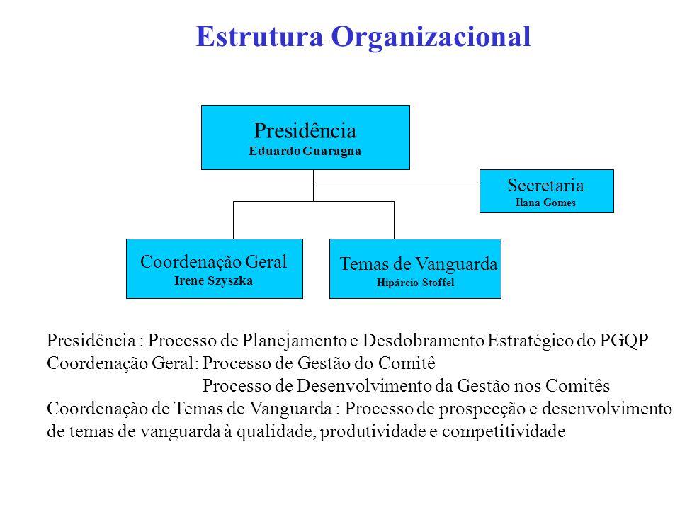 Estrutura Organizacional Presidência Eduardo Guaragna Coordenação Geral Irene Szyszka Temas de Vanguarda Hipárcio Stoffel Secretaria Ilana Gomes Presidência : Processo de Planejamento e Desdobramento Estratégico do PGQP Coordenação Geral: Processo de Gestão do Comitê Processo de Desenvolvimento da Gestão nos Comitês Coordenação de Temas de Vanguarda : Processo de prospecção e desenvolvimento de temas de vanguarda à qualidade, produtividade e competitividade