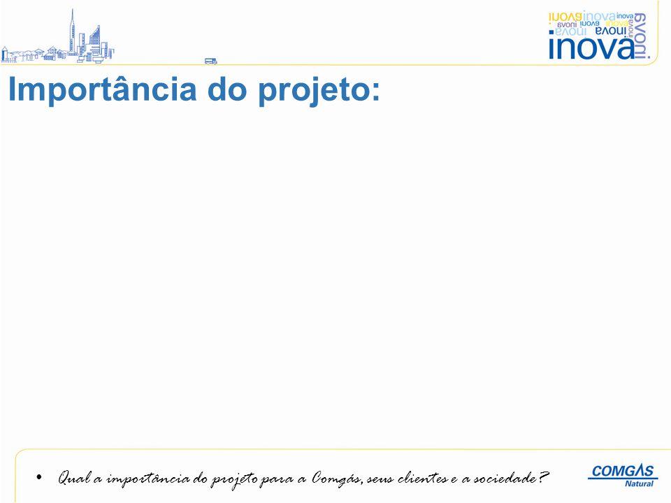 Qual a importância do projeto para a Comgás, seus clientes e a sociedade? Importância do projeto: