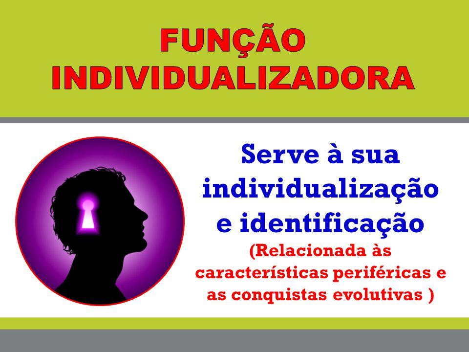 Serve à sua individualização e identificação (Relacionada às características periféricas e as conquistas evolutivas )