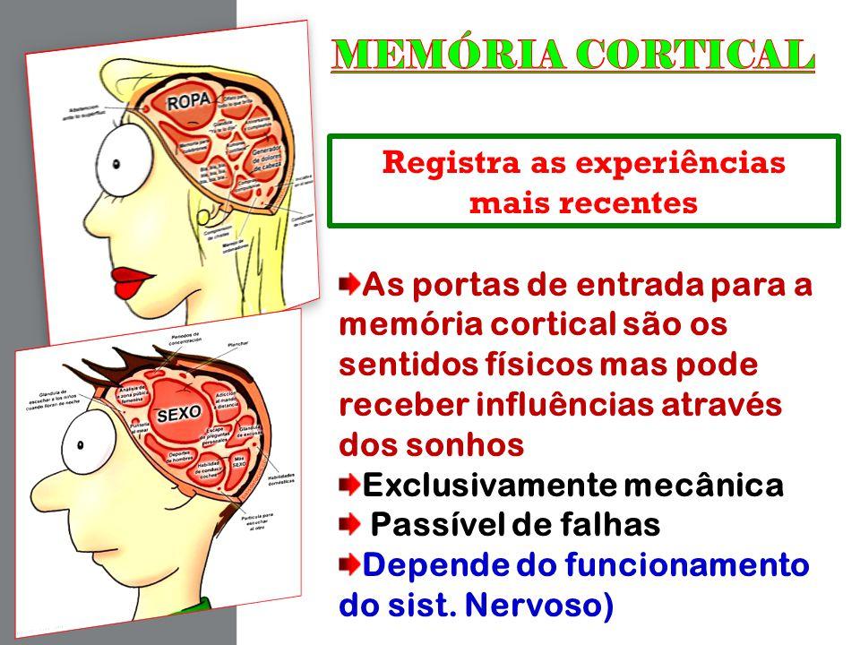 Registra as experiências mais recentes As portas de entrada para a memória cortical são os sentidos físicos mas pode receber influências através dos s