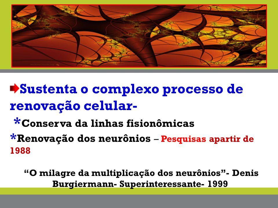 """Sustenta o complexo processo de renovação celular- * Conserva da linhas fisionômicas * Renovação dos neurônios – Pesquisas apartir de 1988 """"O milagre"""
